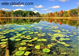 عکس های آرامش بخش از طبیعت زیبای دنیا/www.rahafun.com