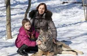 زندگی صمیمی یک خانواده با گرگ های وحشی