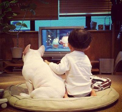 تصاویر ناز کودک 4 ساله و سگ اش,عکس سگ ناز