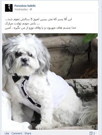 کار عجیب پرستو صالحی در فیس بوک