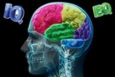 آیا میدانید تفاوت IQ و EQ چیست؟