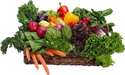 چگونه آهن بدن را از مواد غذایی تامین کنیم
