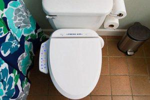 مقایسه مضرات و فواید توالت ایرانی و فرنگی