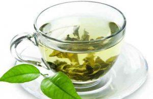 فواید حیرت انگیز و نا شناخته چای سبز