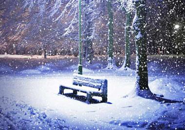 ارامش افراد هنگام بارش برف