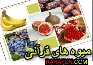 دانستنی های جالب درباره میوه های قرآنی
