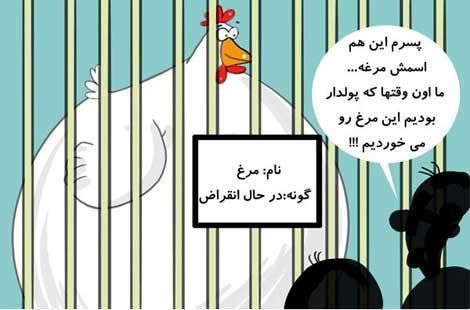 کاریکاتور کمیاب شدن مرغ