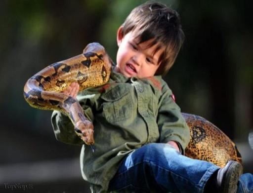 عکس بازی یک کودک با مارهای غول پیکر