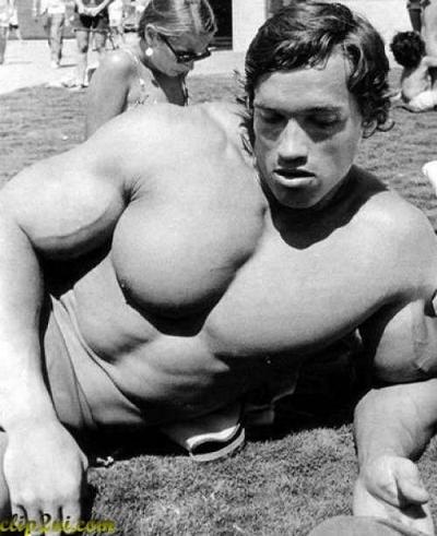گالری عکس های آرنولد