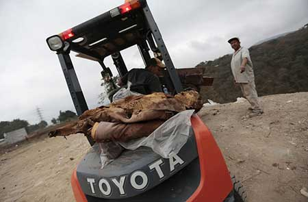 اسباب کشی ترسناک مردگان از قبرستان به همراه عکس