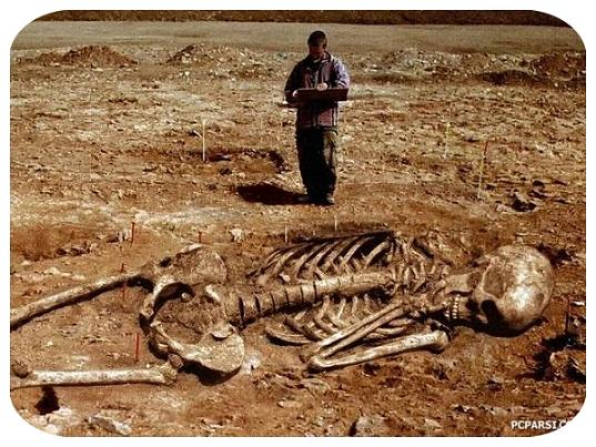 عکس واقعی اسکلت انسان های غول پیکر