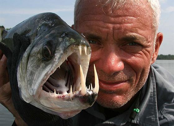 عکس شگفت انگیزترین هیولاهای دریایی