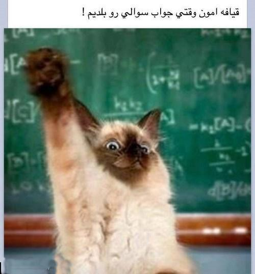 rahafun.com ghiyafe soal قیافه دانشجویان وقتی یه سوالی رو بلد هستن