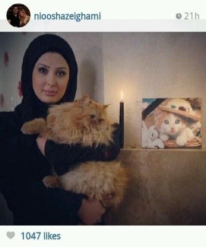 عکس نیوشا ضیغمی در غم گربه اش