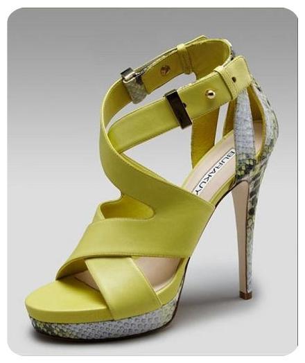 شیک ترین مدل کفش پاشنه بلند