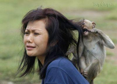 عکس های شوخی حیوانات با زنان