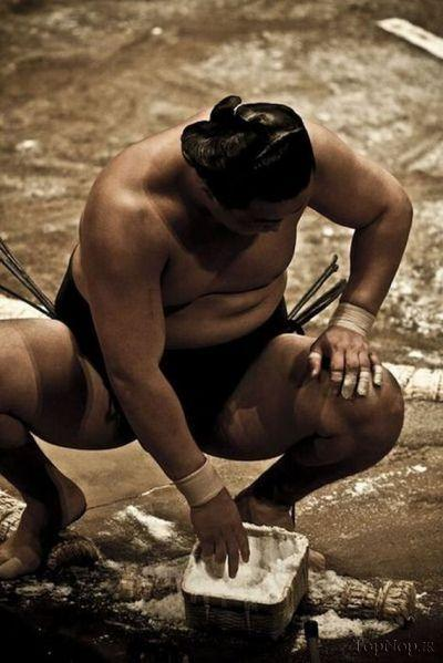 rahafun.com sumo tournament 12 عکس های جالب کشتی سومو Sumo