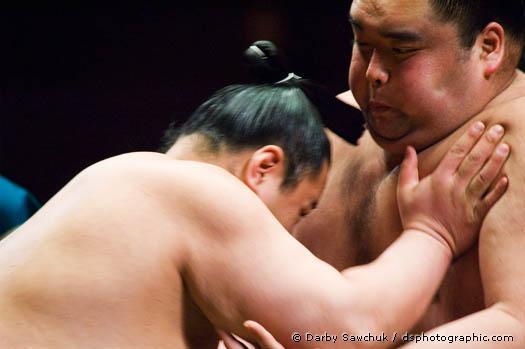 rahafun.com sumo tournament 13 عکس های جالب کشتی سومو Sumo