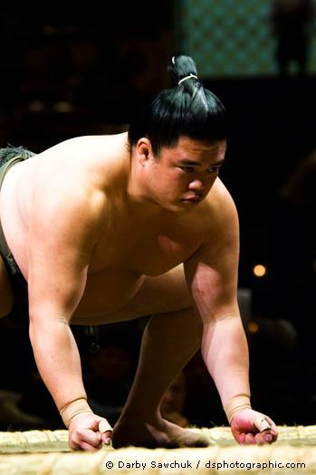 rahafun.com sumo tournament 14 عکس های جالب کشتی سومو Sumo