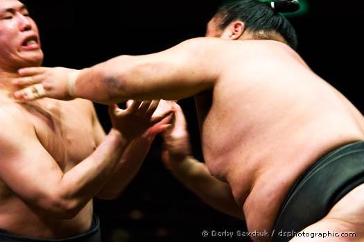 rahafun.com sumo tournament 15 عکس های جالب کشتی سومو Sumo