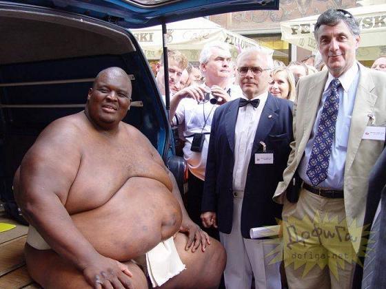 rahafun.com sumo tournament 25 عکس های جالب کشتی سومو Sumo