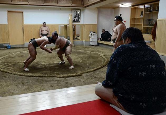 rahafun.com sumo tournament 3 عکس های جالب کشتی سومو Sumo