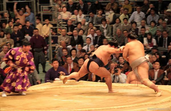 rahafun.com sumo tournament 30 عکس های جالب کشتی سومو Sumo