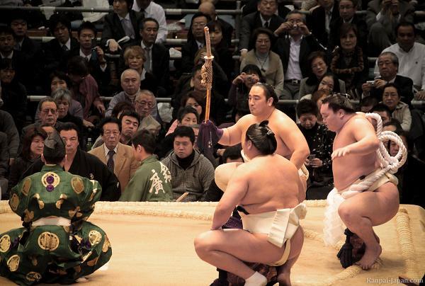 rahafun.com sumo tournament 31 عکس های جالب کشتی سومو Sumo