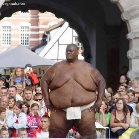 rahafun.com sumo tournament 6 عکس های جالب کشتی سومو Sumo