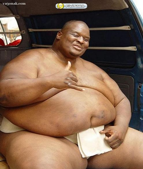 rahafun.com sumo tournament 7 عکس های جالب کشتی سومو Sumo