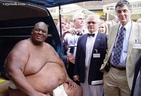 rahafun.com sumo tournament 9 عکس های جالب کشتی سومو Sumo