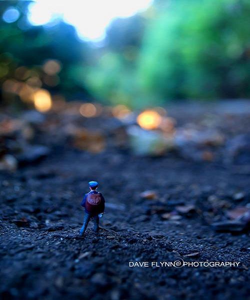 www.rahafun.com Miniature 26 سری جدید عکسهای مینیاتوری زیبا