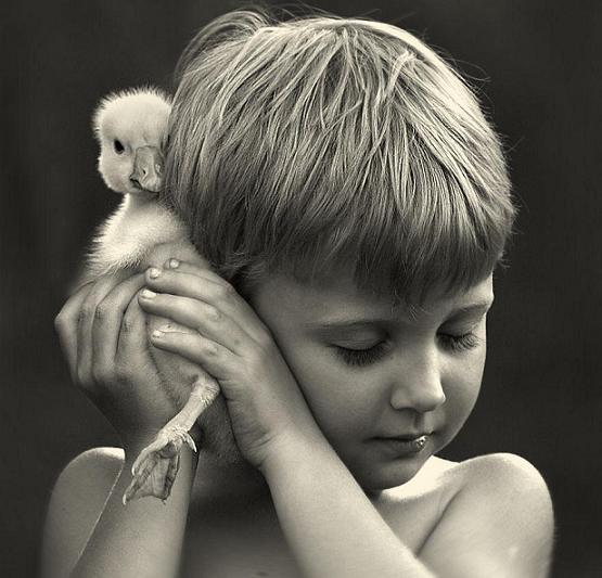 عکسهای بامزه و هنری کودکان با حیوانات