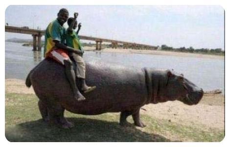 www.rahafun.com ax tanz afrighaei 1 عکسهای جالب از نوع آفریقایی