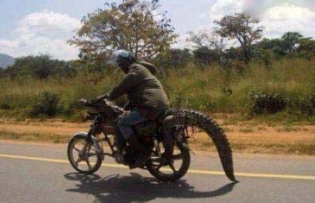 www.rahafun.com ax tanz afrighaei 11 عکسهای جالب از نوع آفریقایی