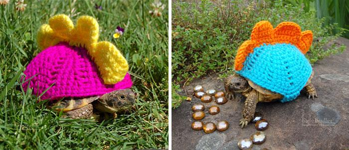 www.rahafun.com-cute-crochet-tortoise-cozy-katie-bradley (1)