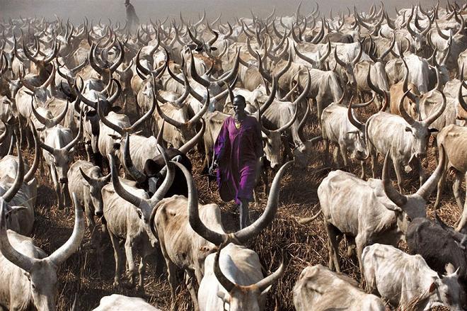 عکس مردم آقریقا