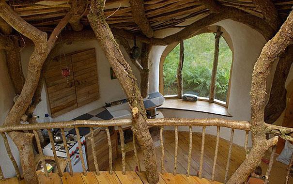 عکس کلبه های دیدنی داخل جنگل