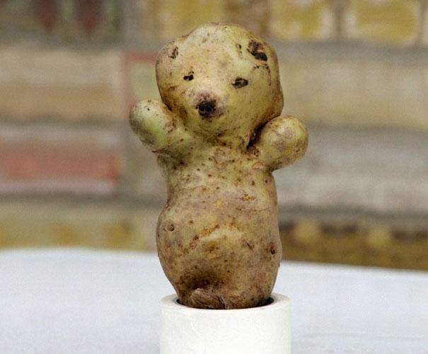 عکس های خنده دار از میوه و سبزیجات