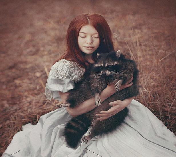 عکس حیوانات وحشی