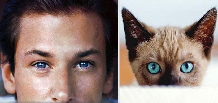 مقایسه پسر و گربه
