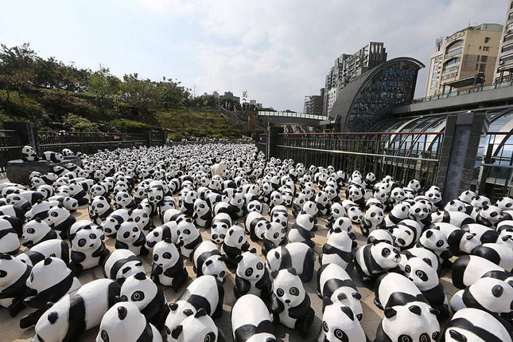 www.rahafun.com-paper-mache-panda-tour-paulo-grangeon-11 (5)