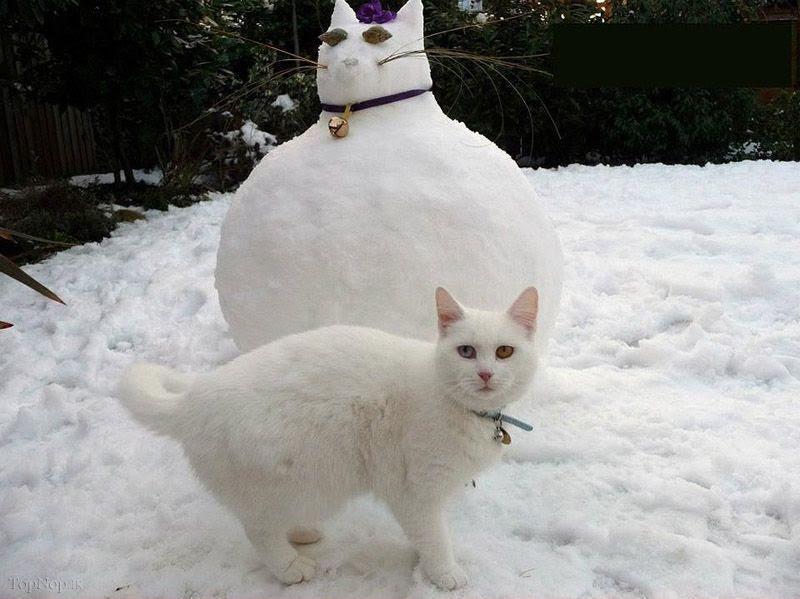 www.rahafun.com pic SNOWMAN 13 عکس های زیبا آدم برفی