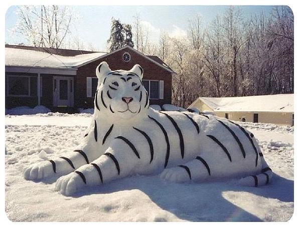 www.rahafun.com pic SNOWMAN 17 عکس های زیبا آدم برفی