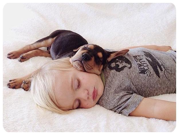 عکس های جالب خوابدن کودکان با سگ